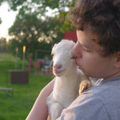 Goat hobbyist boy with LaMancha kid